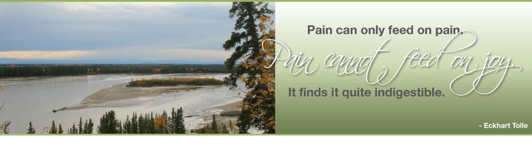 Integrative Pain Center